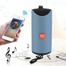 TG113 Haut-Parleur Bluetooth Sans Fil Avec Poignée (Bleu)